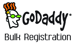 GoDaddy Bulk Registration Review
