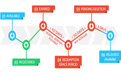 Domain Name LifeCycle And How to buy Inexpensive Domain