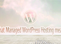 Managed WordPress Hosting: Advantages & Disadvantages