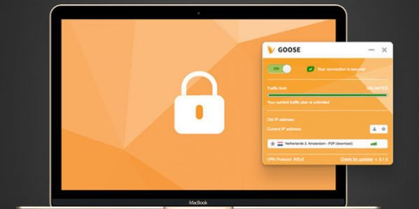 goose vpn capture 3